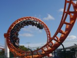 The viper at SeaWorld