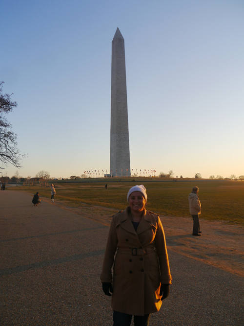 The Needle Washington Monument