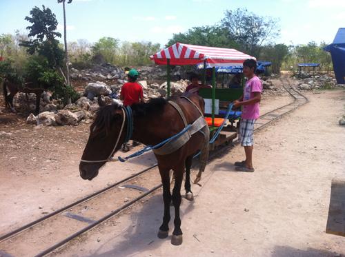 Horse drawn wagon in Cuzama