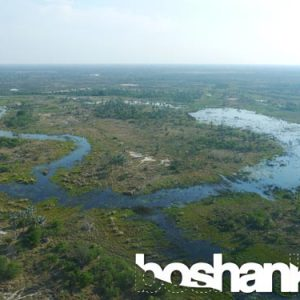 Aerial View over the Okavango Delta in Botswana, Southern Africa