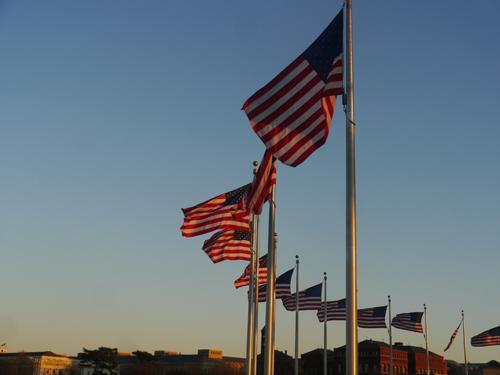 US Flags around The Needle Washington Monument