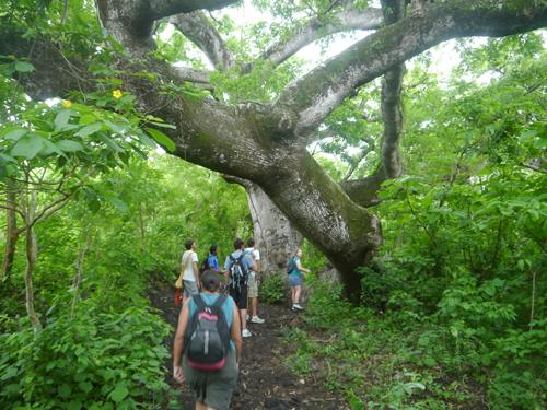 Hiking Volcan Concepcion, Ometepe, Nicaragua
