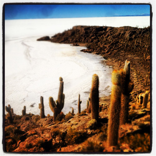 Instagram photo of Fish Island in Bolivia